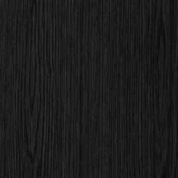 Dąb czarne
